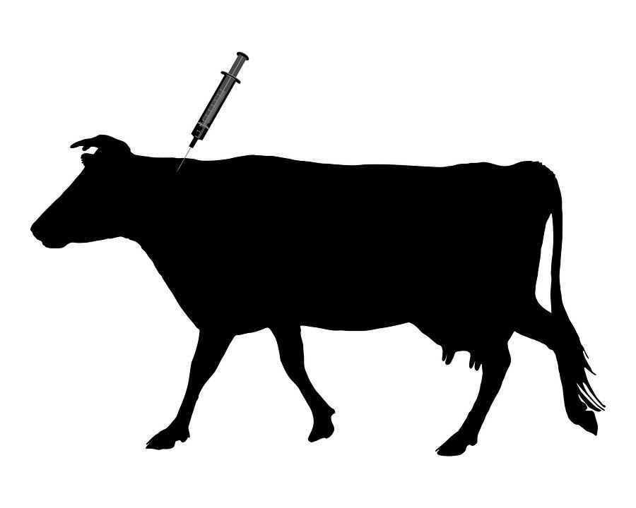 herd-immunity-logic-vaccines