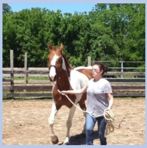 Korey-gardasil-horse