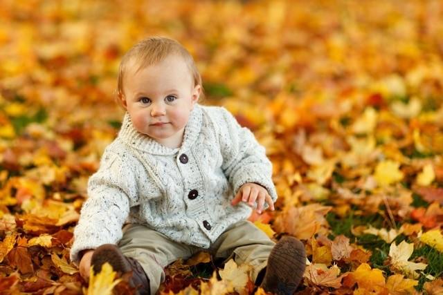 autumn-275920_960_720