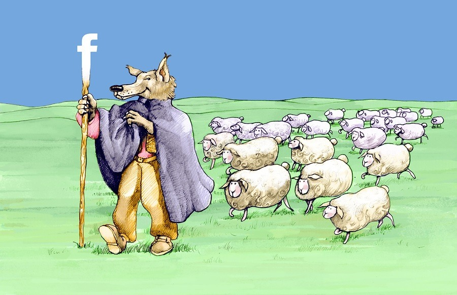 a wolf in shepherd has a stick with the symbol of facebook and is followed by sheep
