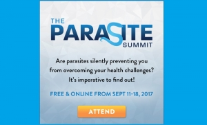 PARASITE-Summit-FB-300x182