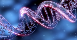 11-30-DNA_Featured_Image-300x156