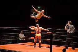 Professional-Wrestling